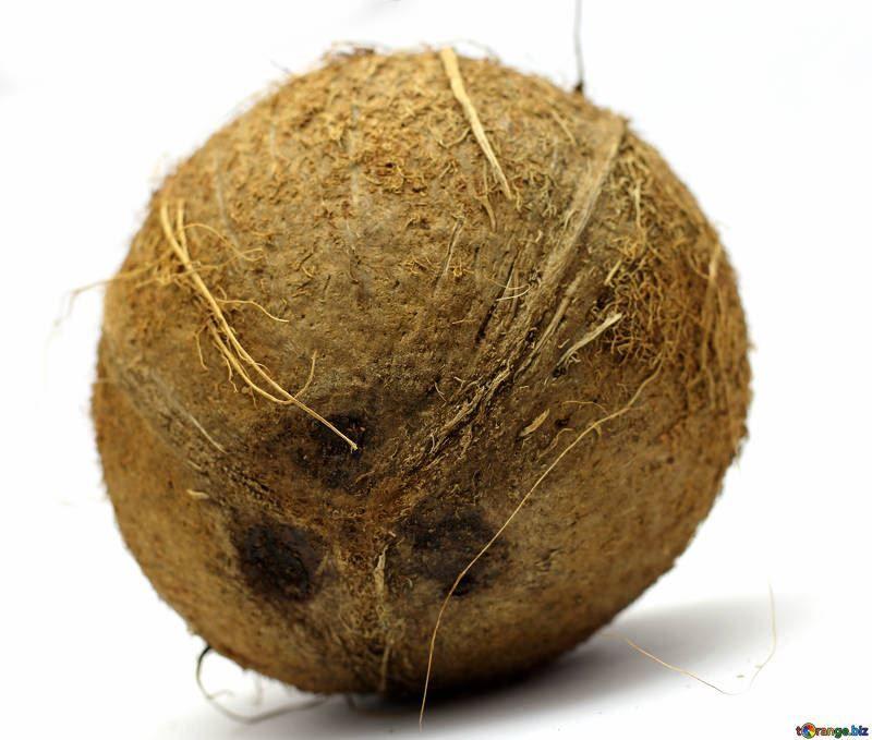Купить фото кокосов? Скачайте бесплатно