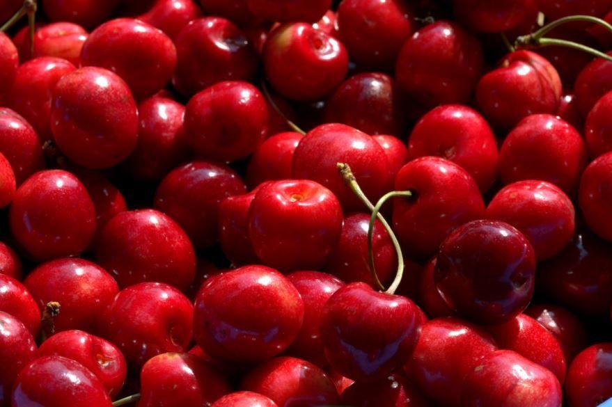 Скачать фото зимней ягоды – вишни бесплатно