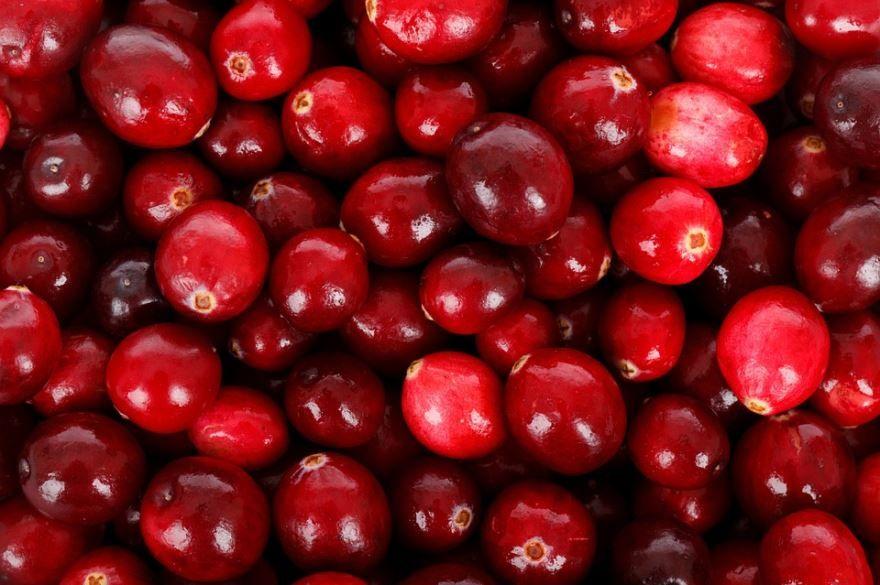 Смотреть фото ягод клюквы для вкусных рецептов пирога