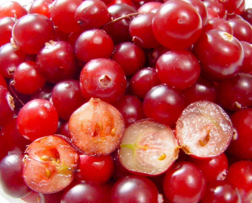 Скачать фото вкусных, домашних ягод клюквы бесплатно