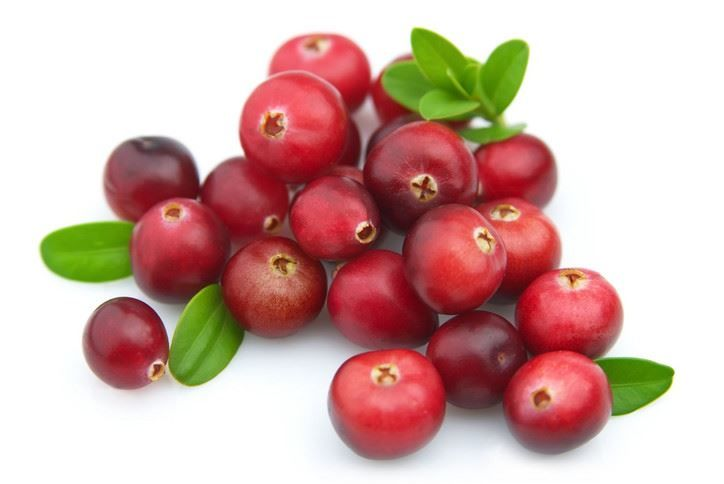 Фото домашних ягод клюквы для рецептов морса