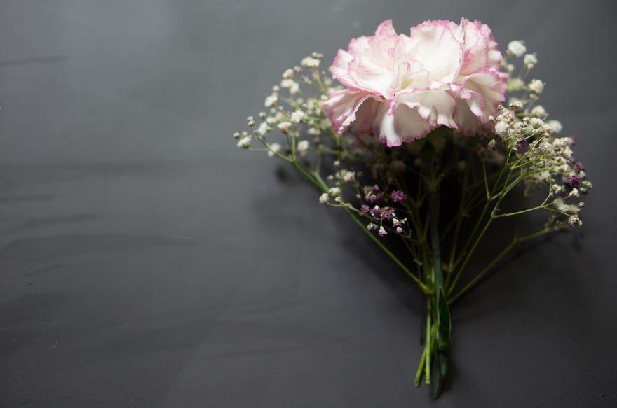 Фото многолетних цветов – гипсофилы