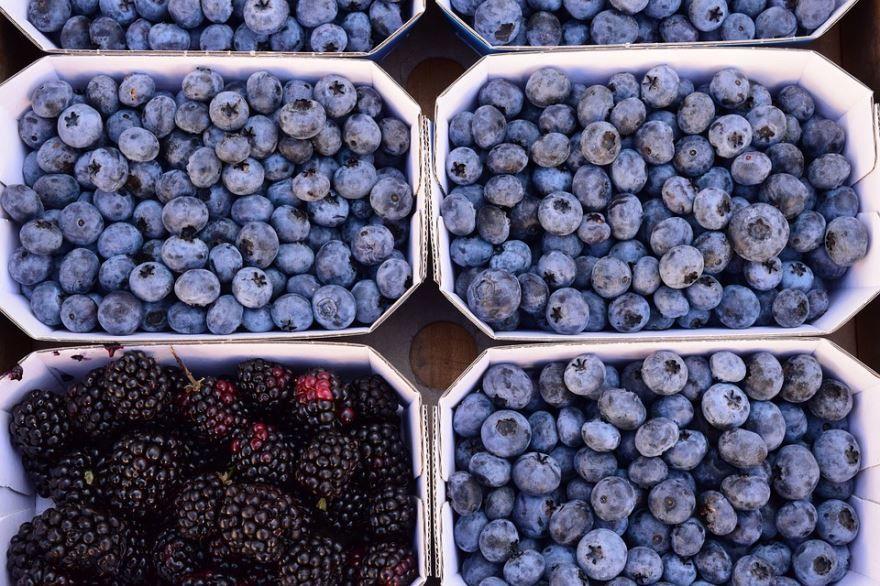 Скачать Фото ягод голубики, которую заготавливают на зиму