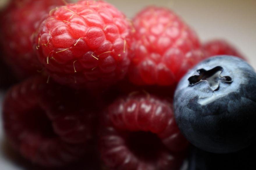 Купить фото ягод малины? Скачайте бесплатно