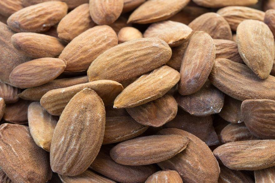 Фото орехов миндаля, выращенных в открытом грунте