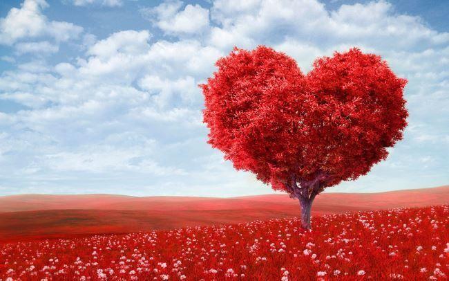 C Днем Святого Валентина! Сердце