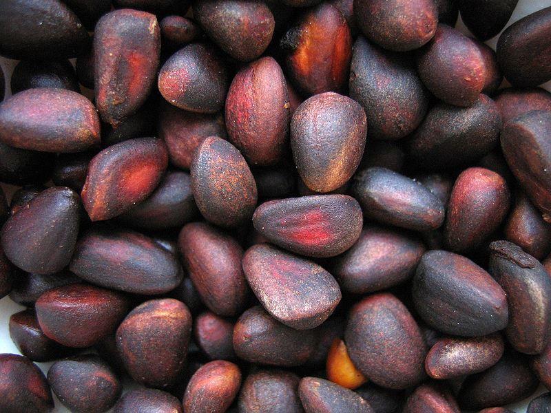 Купить фото кедровых орехов из Москвы? Скачайте бесплатно