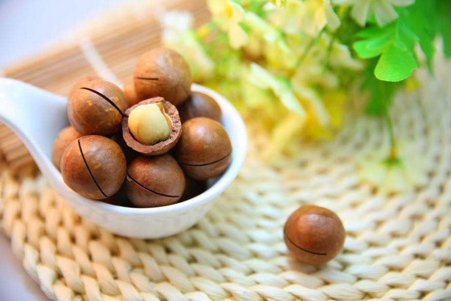 Купить фото орехов макадамии? Скачайте бесплатно