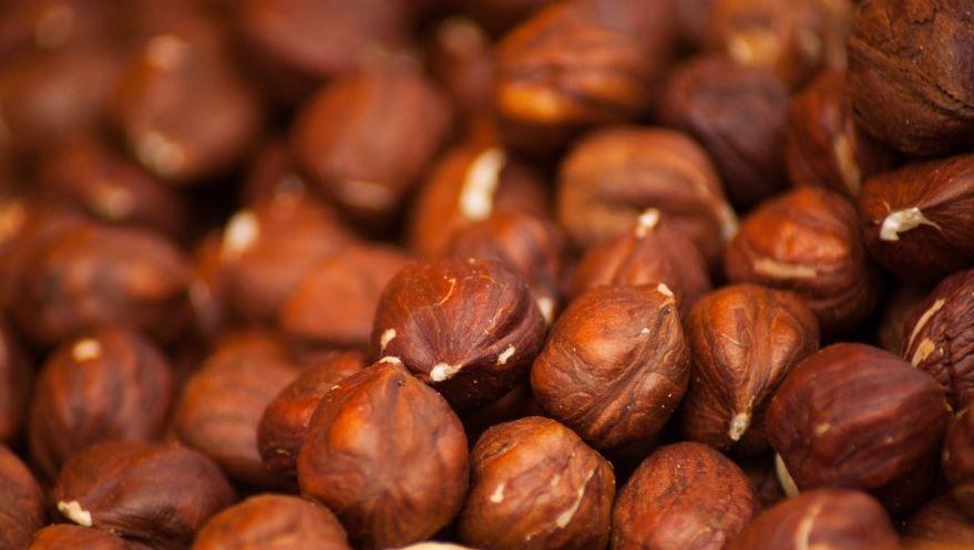 Фото ореха фундука, обладающего полезными свойствами