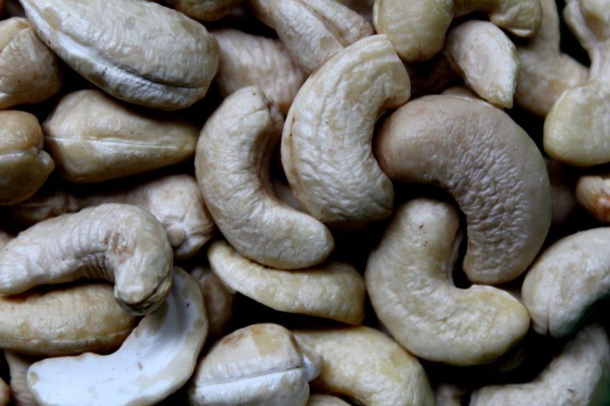 Фото домашнего, ореха – кешью