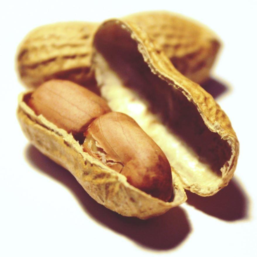 Фото ореха арахиса, обладающего полезными свойствами