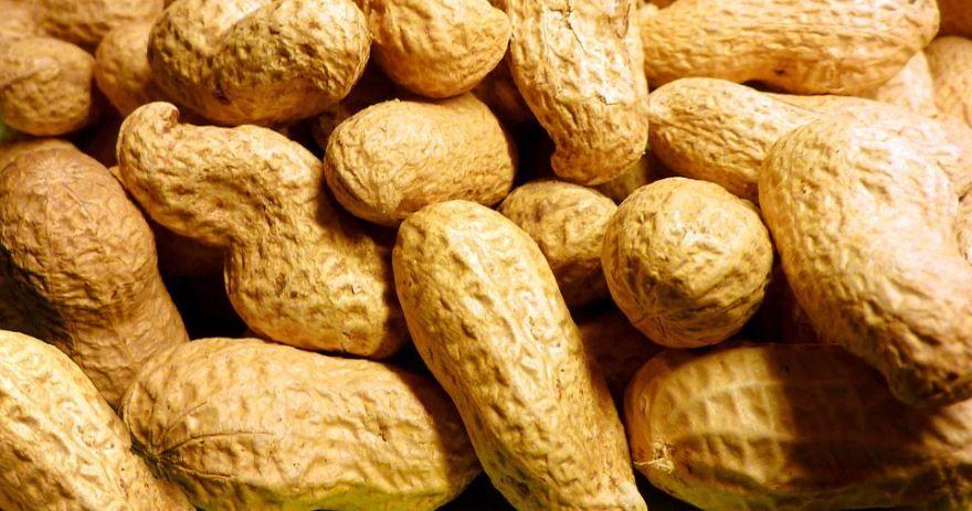 Фото калорийного домашнего ореха – арахиса, несущего пользу организму