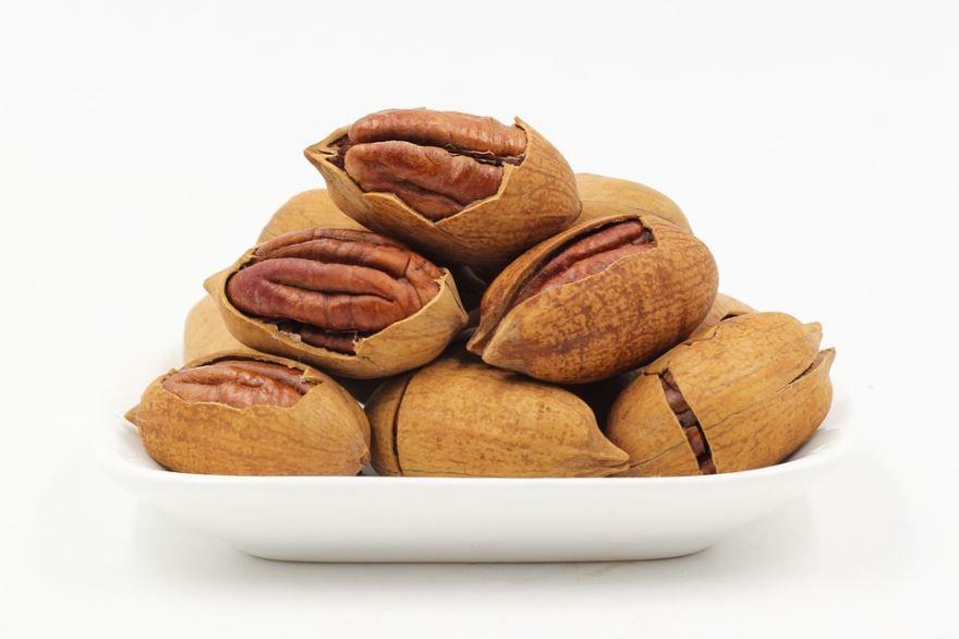 Фото кленового ореха пекан, обладающего полезными свойствами