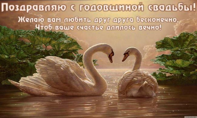 С годовщиной свадьбы! Лебеди