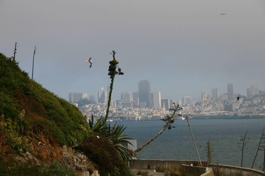 Смотреть красивое фото города Сан Франциско штат Калифорния США