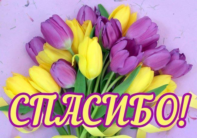 Красивая картинка Спасибо! с цветами