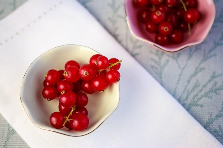 Купить фото красной смородины с листьями? Скачайте бесплатно