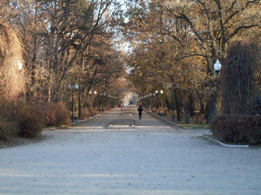 Центральная аллея парка имени Горького город Мелитополь