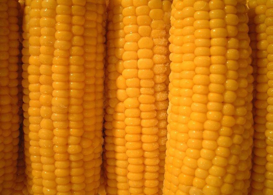 Смотреть фото копченной, пекинской кукурузы в хорошем качестве