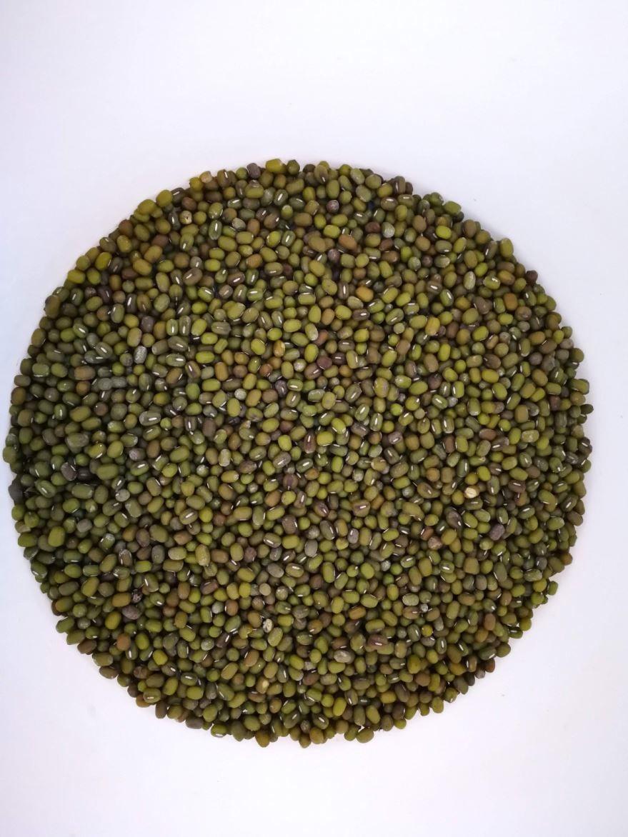 Скачать бесплатно фото зеленой чечевицы, для приготовления в кастрюле, мультиварке как каши