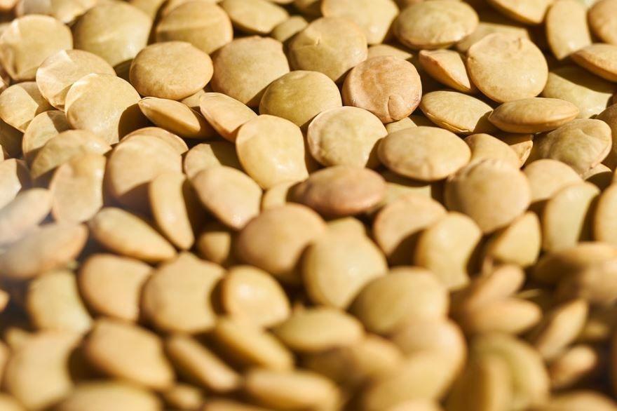 Бесплатные фото некалорийной каши – чечевицы, полезной для здоровья