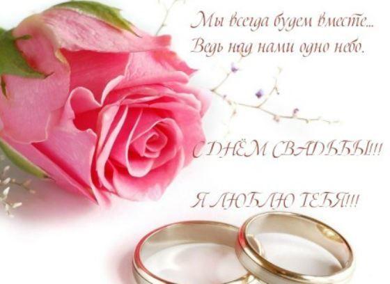 Поздравления мужу с годовщиной, цветок, кольца