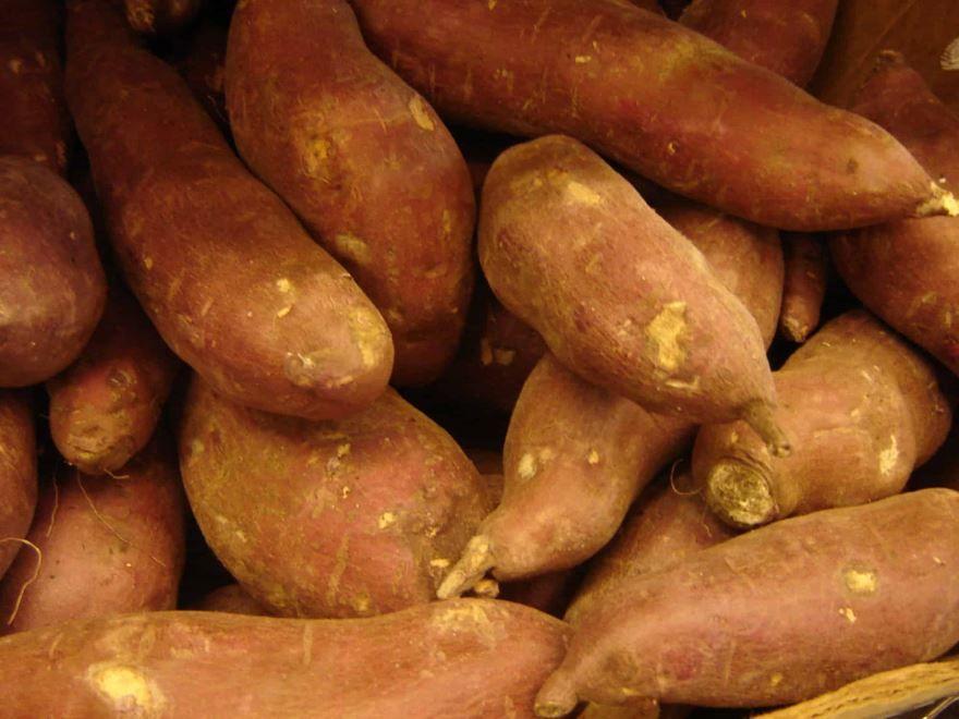 Скачать фото некалорийного сладкого картофеля – батата