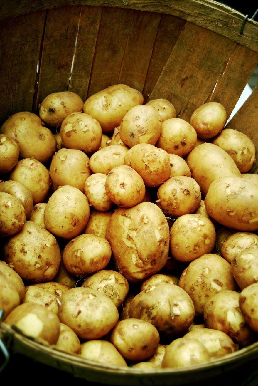 Скачать фото некалорийного картофеля из Москвы