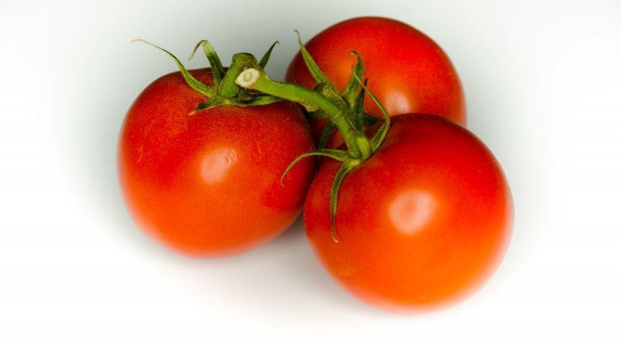 Купить фото растения – красных помидоров? Скачайте бесплатно