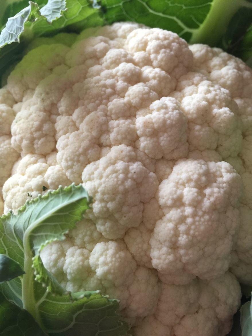 Смотреть фото цветной капусты, для приготовления блюд по вкусным рецептам