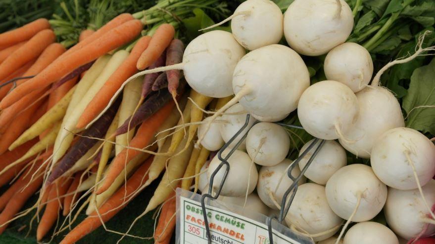 Смотреть фото растения – репы, для приготовления вкусных блюд
