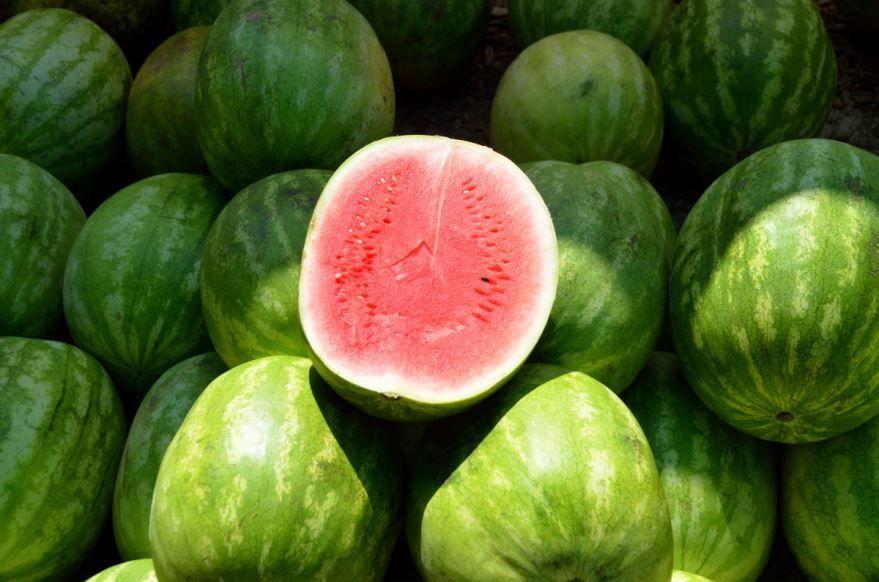 Скачать фото и картинки большого плода арбуза, обладающего пользой и вредом