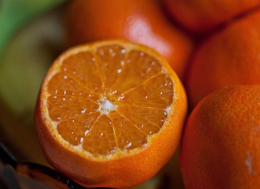 Бесплатные фото и картинки апельсинов из Севастополя, выращенных в домашних условиях