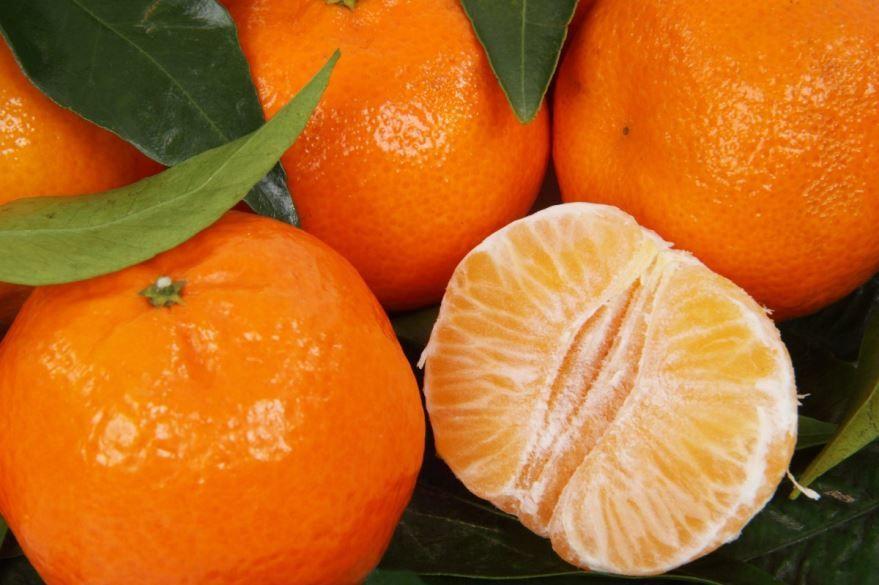 Купить фото домашних мандаринов – новогодних семечек? Скачайте бесплатно