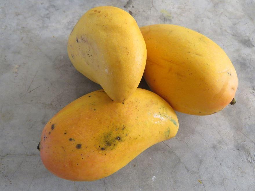 Купить фото манго аутлет для рецептов фруктового салата? Скачайте бесплатно