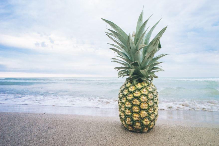 Скачать картинки и фото ананаса, для рецептов с сыром, грудками куриными, консервирования
