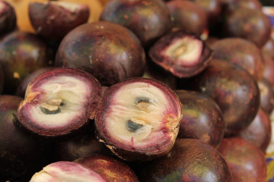 Смотреть фото фрукта – мангустина тойс из Москвы, выращенного в домашних условиях