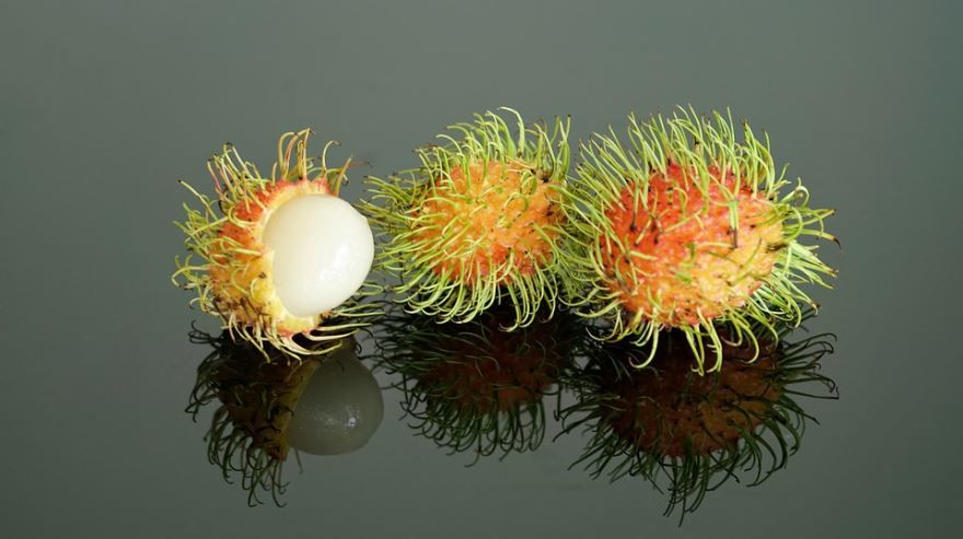 Смотреть фото плодов дерева – рамбутана из Москвы, выращенного в домашних условиях