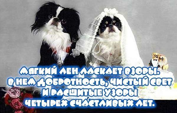 Свадьба 4 года поздравления шуточные