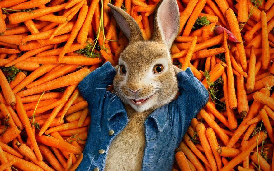 Скачать бесплатно постеры к фильму Кролик Питер в качестве 720 и 1080 hd