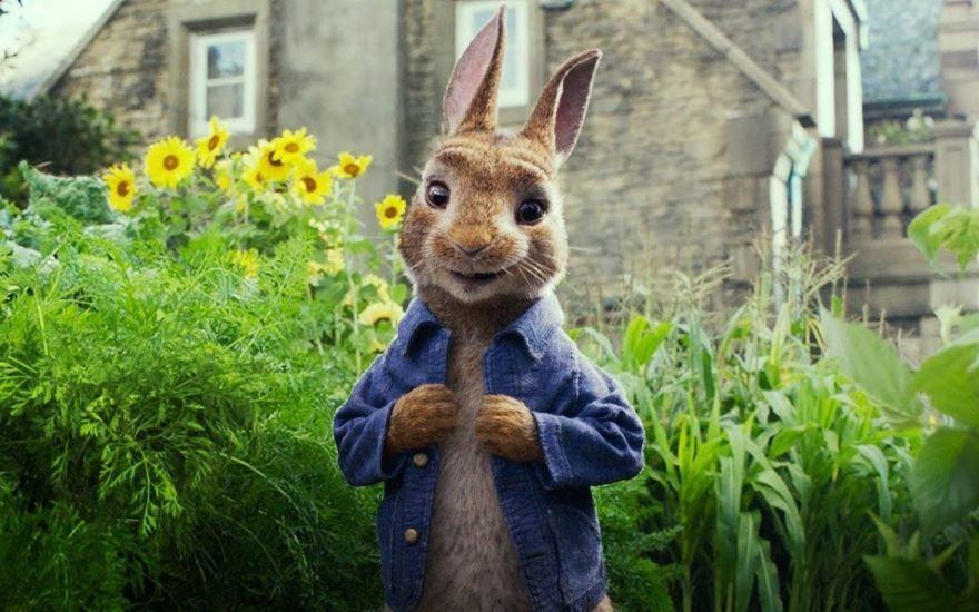 Смотреть бесплатно постеры и кадры к фильму Кролик Питер онлайн