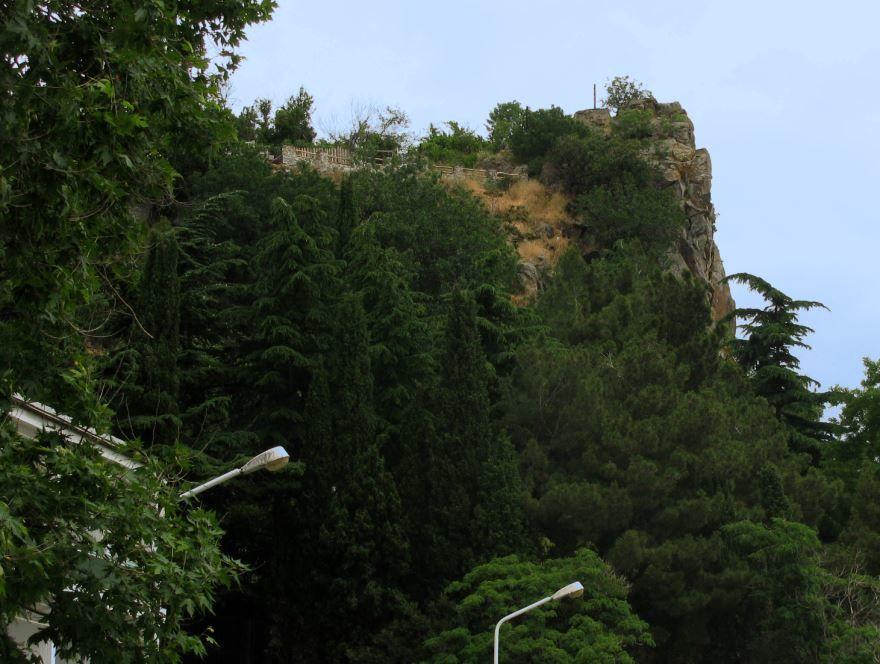 Природа города Поти
