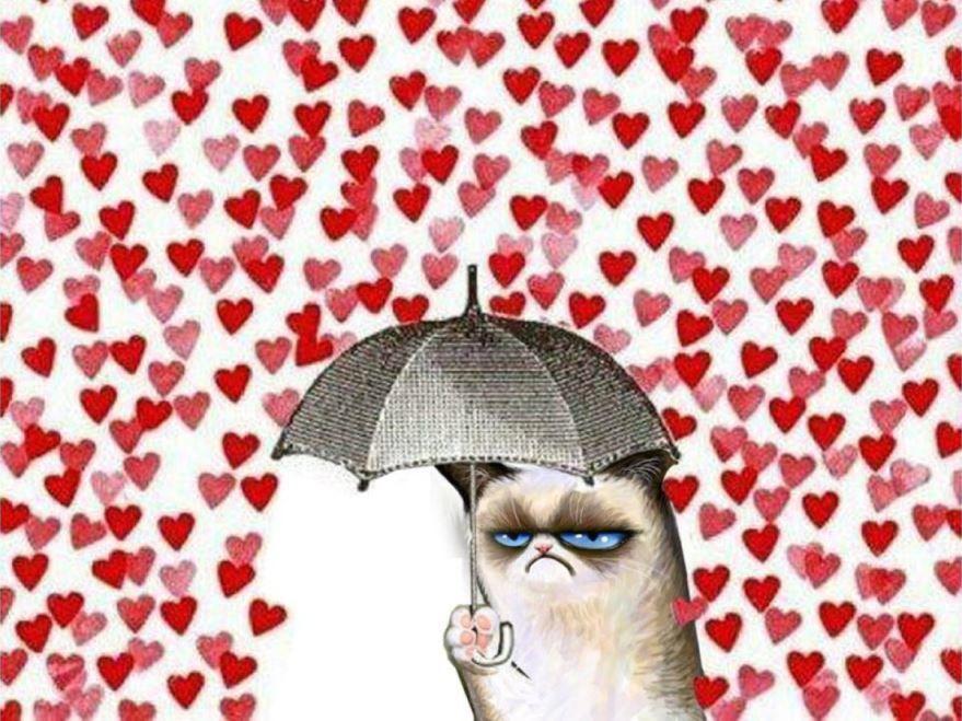 День Святого Валентина прикольная открытка