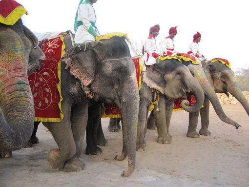 Путешествие по Джампуру
