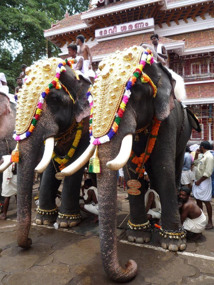 Путешествие город Джампур