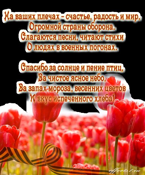 Стихи на 23 февраля мужчинам