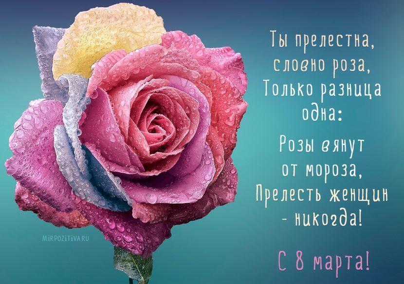Поздравление с международным женским днем.