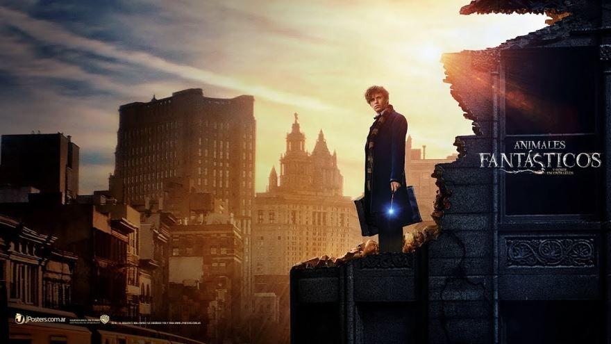 Смотреть бесплатно постеры и кадры к фильму Фантастические твари и где они обитают онлайн