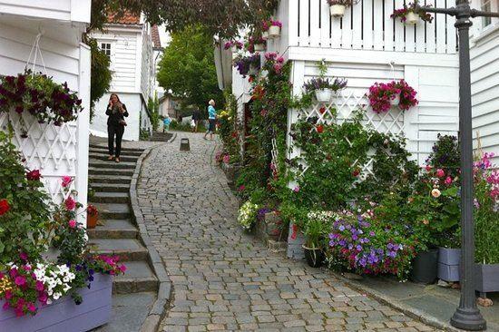Улица город Ставангер