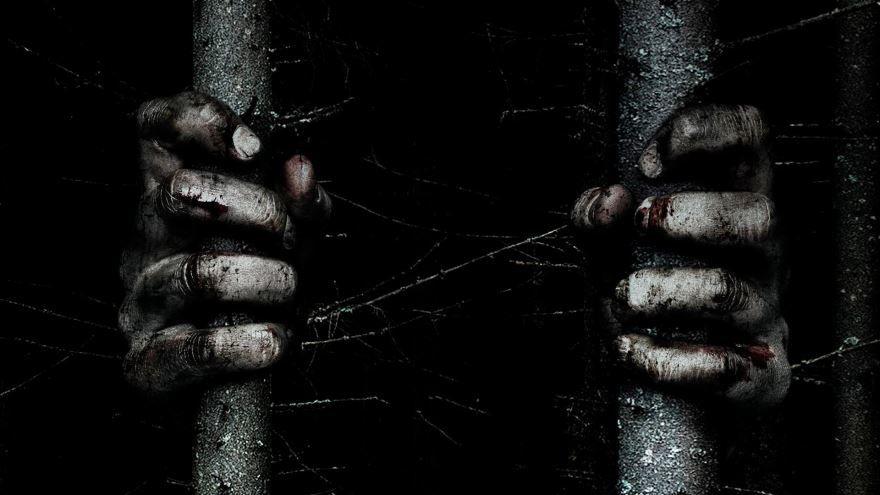 Бесплатные кадры к фильму Ведьма из блэр: новая глава в качестве 1080 hd